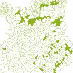 graphisme lichen géographique
